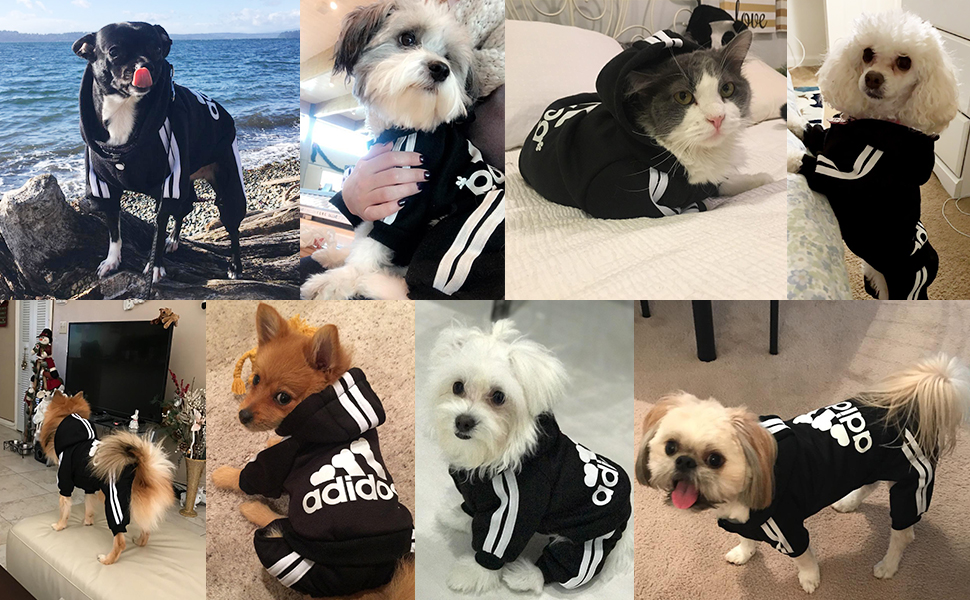 Pet Clothes for Dog Cat Puppy Hoodies Coat Winter Sweatshirt Warm Sweater Dog Outfits  dog jacket Pet four-legged clothes